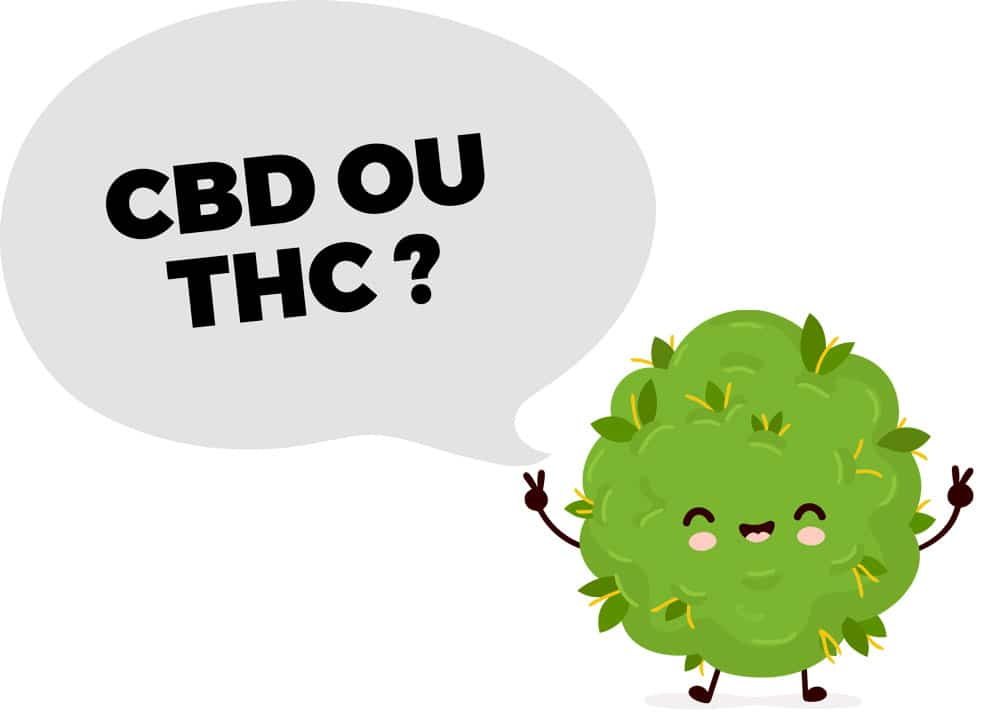 cbd ou thc
