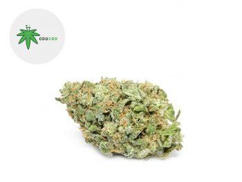 Fleurs CBD Fleur White Widow CBD Sous serre 13.5% Cducbd