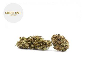 Fleurs CBD Fleur OG Kush CBD Sous serre 11% Greenowl