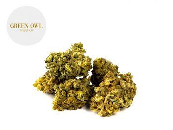 Fleurs CBD Fleur Orangello CBD Indoor 7% Greenowl