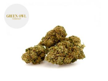 Fleurs CBD Fleur Skywalker CBD Indoor 17% Greenowl