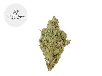 Fleurs CBD Fleur Super Silver Haze CBD Sous serre 10% La Boutique en Herbe