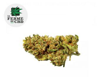 Fleur Lemon skunk CBD Indoor 13% La Ferme du CBD