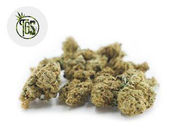 Fleurs CBD Fleur Gorilla Glue CBD Sous serre 5% The Green Store