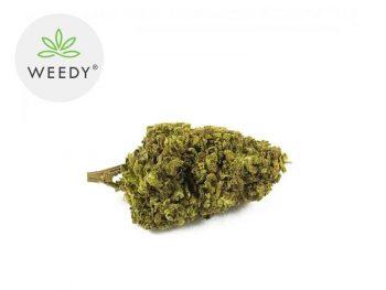 Fleurs CBD Fleur Remedy CBD Indoor 8% Weedy