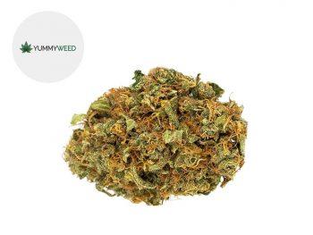 Fleurs CBD Fleur Orange Bud CBD Indoor 11% Yummyweed