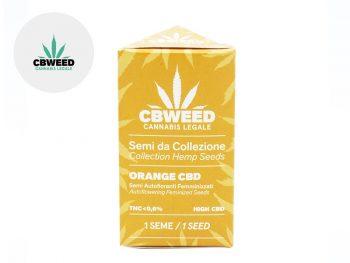 Graines CBD Graines Orange Bud CBD autoflorissantes Cbweed
