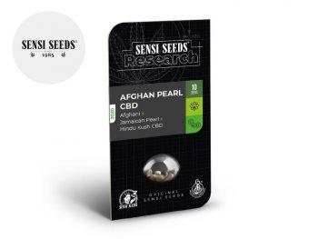 Graines CBD Graines Afghan Pearl CBD autoflorissantes Sensi Seeds
