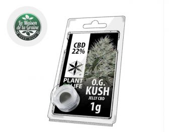 Haschich CBD Résine OG Kush CBD 22% Plantoflife