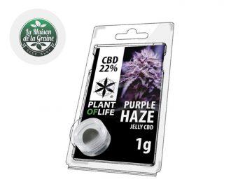 Haschich CBD Résine Purple Haze CBD 22% Plantoflife